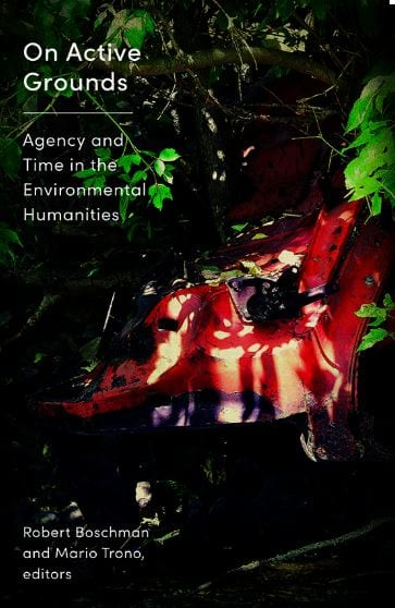 On Active Grounds Agency and Time in the Environmental Humanities