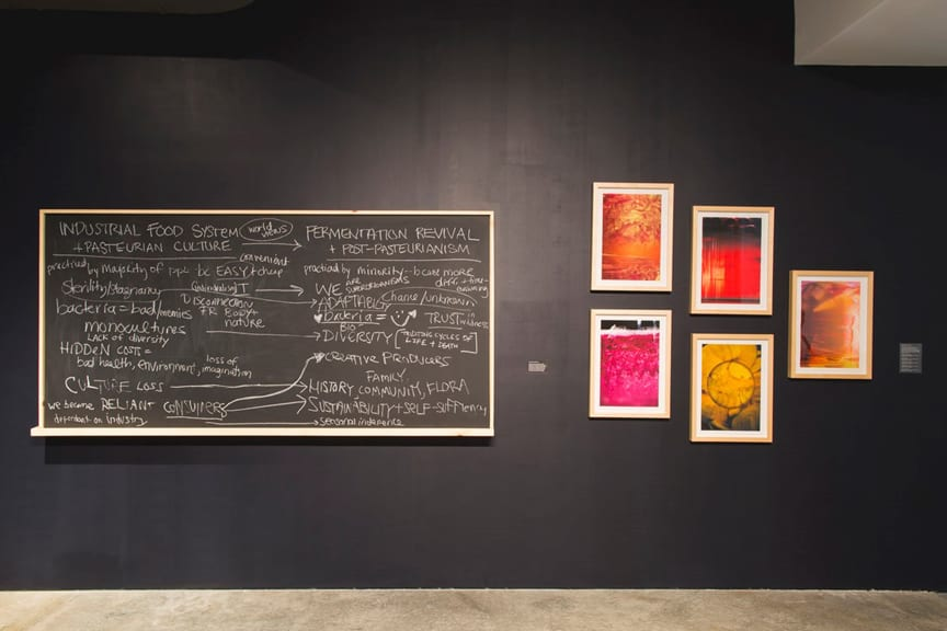 OS Fermentation gallery installation with reading group participants' notes