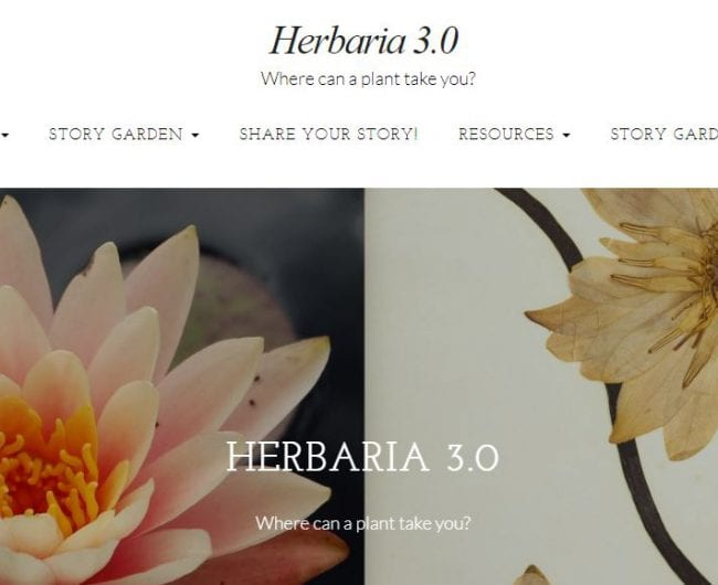 Herbaria 3.0 cultural collection human plant relationships