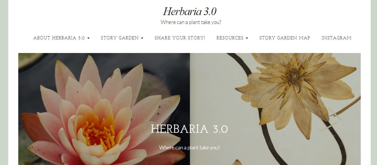Herbaria 3.0 Plant Human Relationships Contemporary Stories