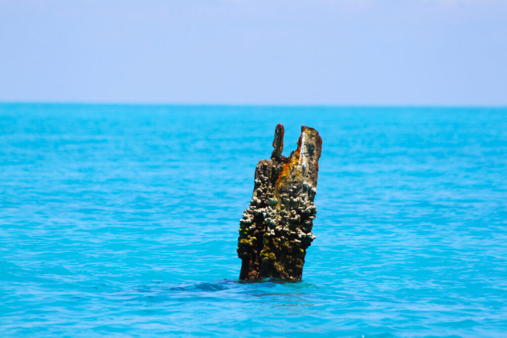 Very bright blue water with an encrusted stump sticking out of it.