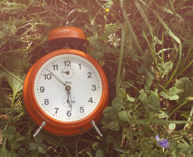 Red alarm clock lying in grass.